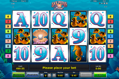dolphins pearl novomatic slot